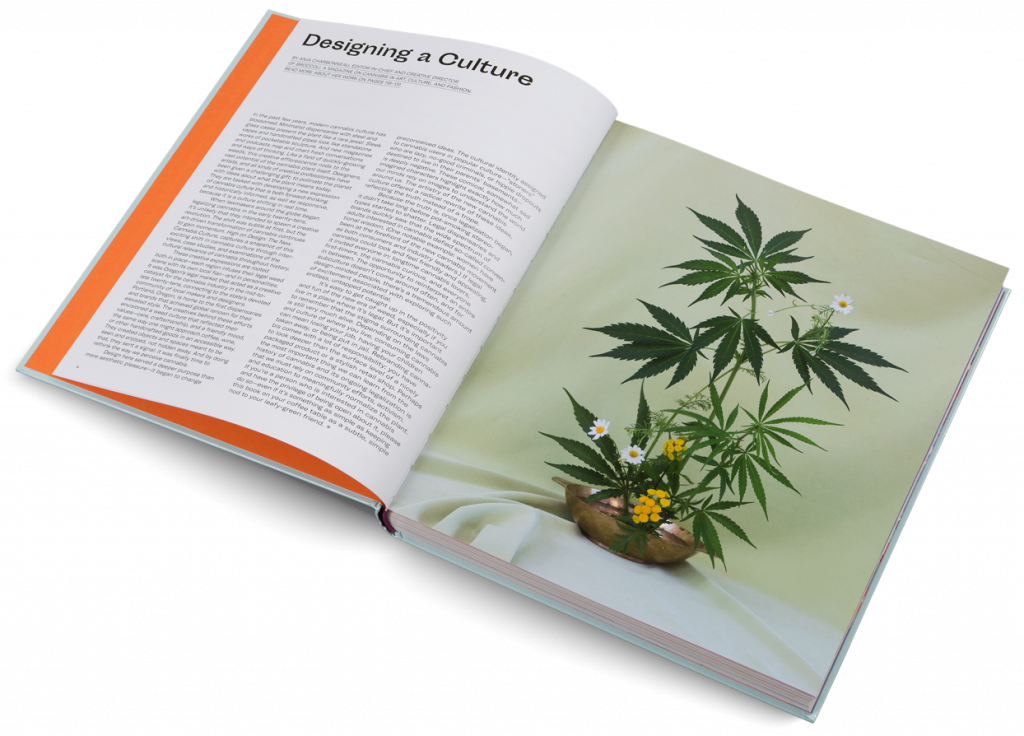 The cannabis Industry Has Become a Thriving Activity.