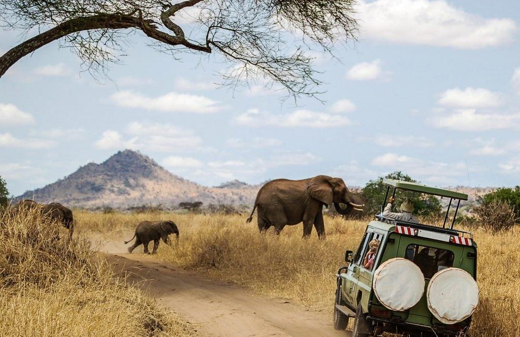 Safari adventures, Photo by Shutterstock